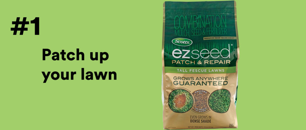 #1 Patch up your lawn