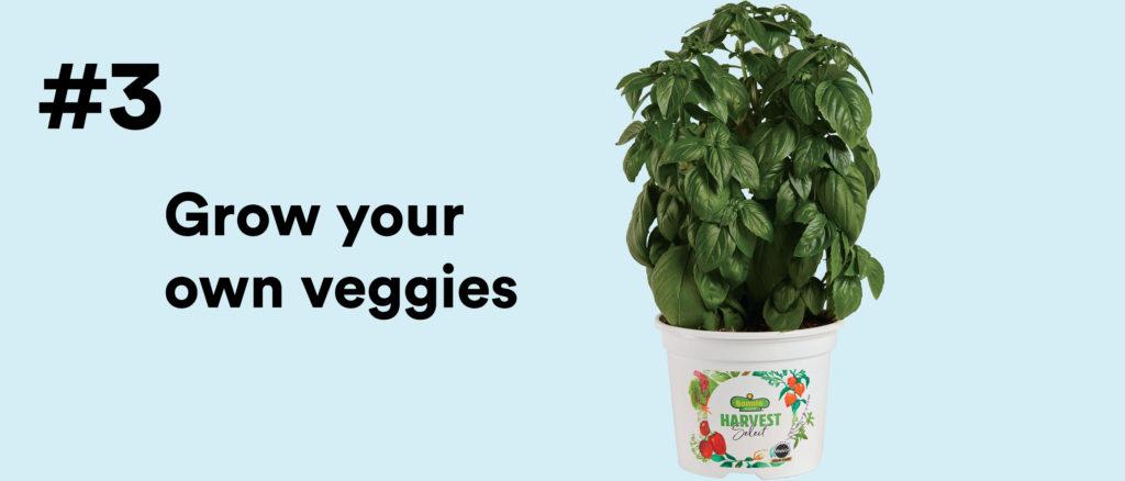 #3 Grow your own veggies